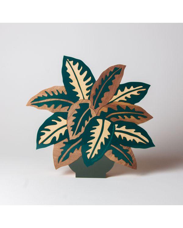 PLANTAS---COMIGO-NINGUEM-PODE