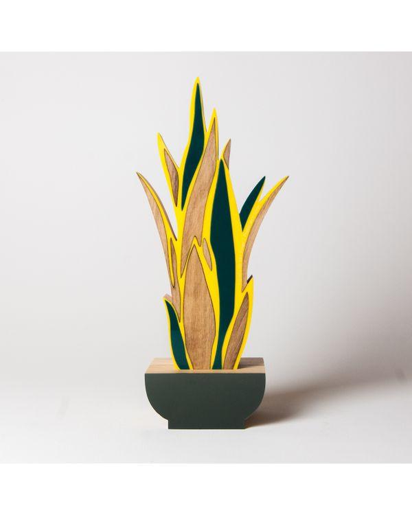 PLANTAS---ESPADA-DE-SAO-JORGE