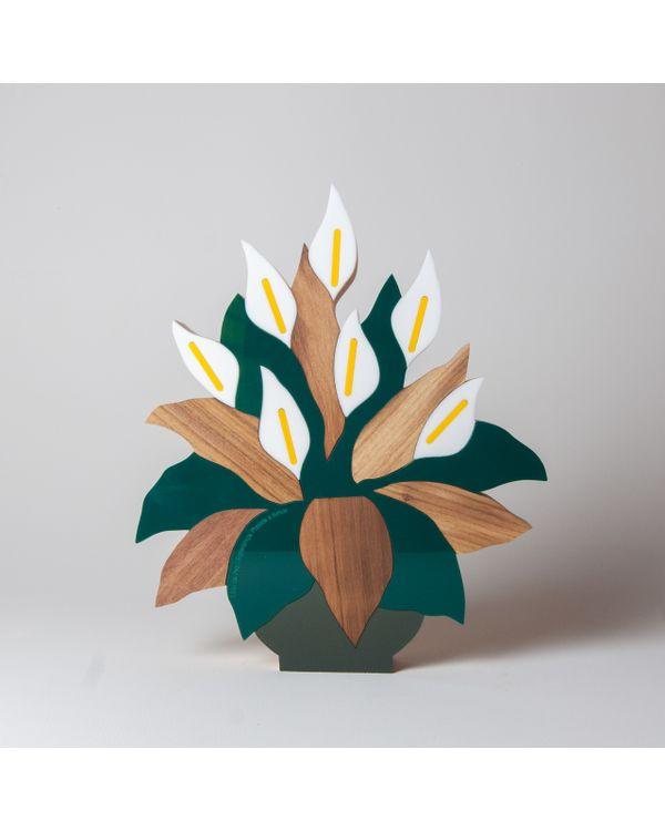 PLANTAS---LIRIO-DA-PAZ