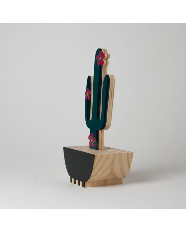 MEXICO---CACTOS-CORDA