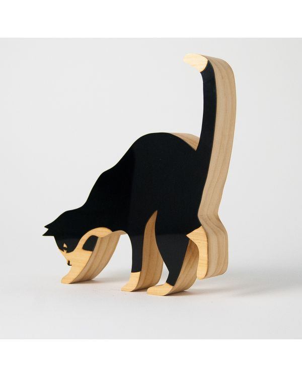 PETS---GATO-CURIOSO
